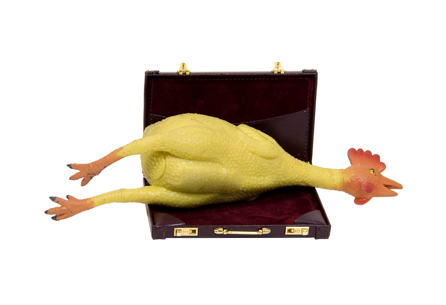 Rubber Chicken Briefcase